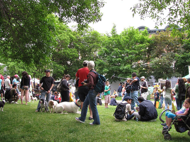 """Woofstock in Toronto in 2009"" by ltdan (Dan Dickinson) under CC license."