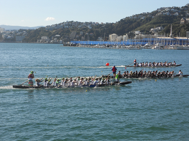 """Dragon Boat Racing at Wellington Waterfront"" image by 4nitsirk (Kristina D.C. Hoeppner)"