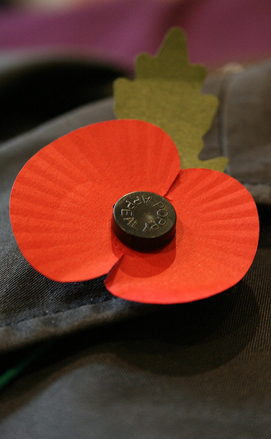 """Poppy for British Remembrance Day 2009"" image by paul-simpson.org (Paul Simpson)"