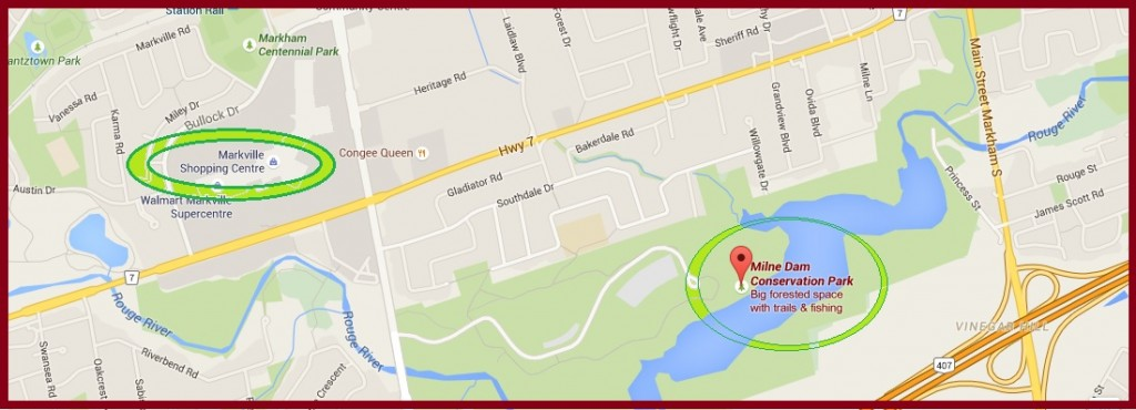 """Map for Milne Dam Conservation Area in Markham"" image (c) by Mike DeHaan via Google Maps"