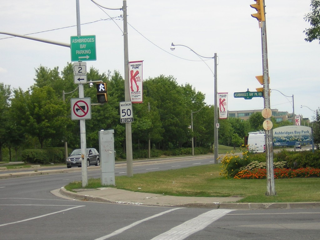 """Ashbridges Bay Park Road at Coxwell and Lake Shore Blvd East"" image by Mike DeHaan"